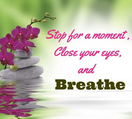 Stop for a moment, close your eyes, and breathe